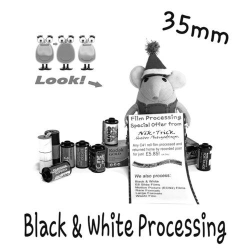 Black & White Processing