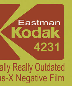 Eastman Kodak 4231